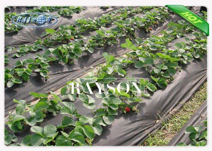 2% UV - Resistance Non Woven Landscape Fabric , Black Weed Control Fabric