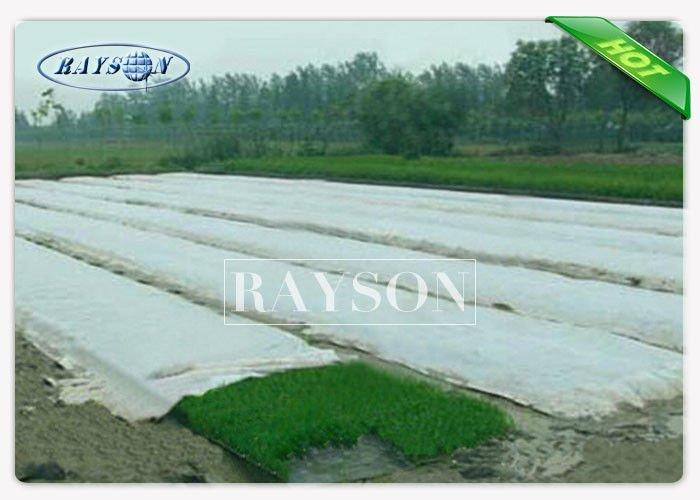 White Landscape Fabric Weed Control Non woven Landscape Fabric for Agriculture