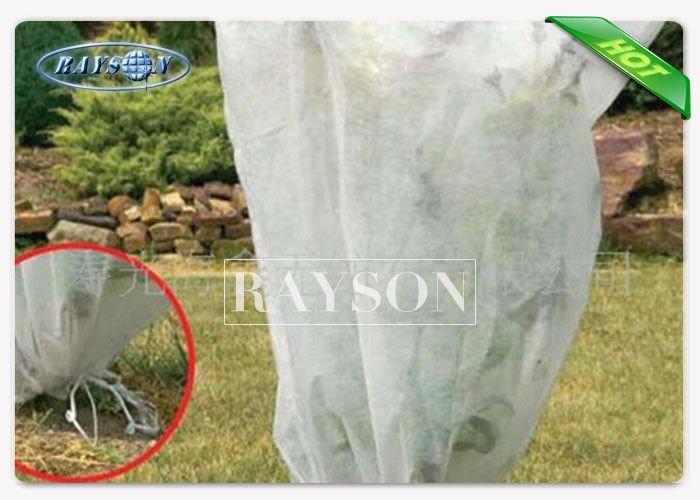 50 gsm UV 3% Polypropylene Frost Protection Fleece , Biodegradable Garden Fleece Bags