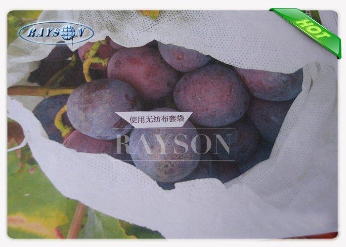white color bags to protect fruit on trees wholesale for pear and vegetable