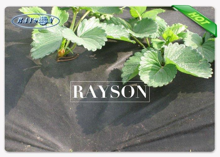 Black 50GSM Non Woven Garden Weed Control Fabric Killing Weeds On Farm