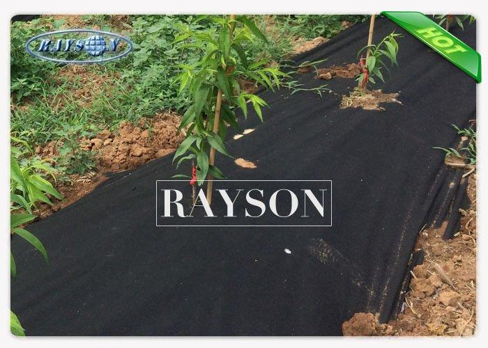 Erosion Control Agriculture TNT Black Landcape Barrier 1m × 50m Weed Block Matting