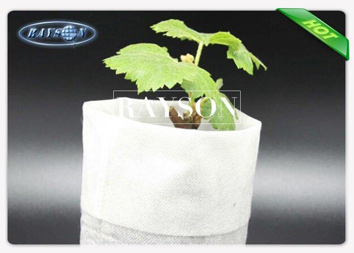 50GSM Size 14 cm x16 cm White Color Plant Non Woven Cultivating Bag Popular For Europe Market