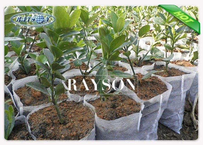 Disposable White Non Woven Cultivating  Bag In PP Spunbond , Plant Growing Bags