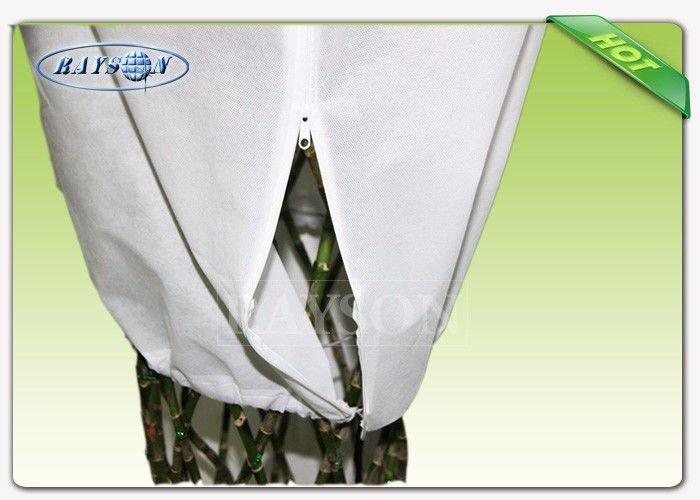 PP Spunbond Non Woven Fabric for Farm Cover , Plant Bag Material Nonwoven Fabric